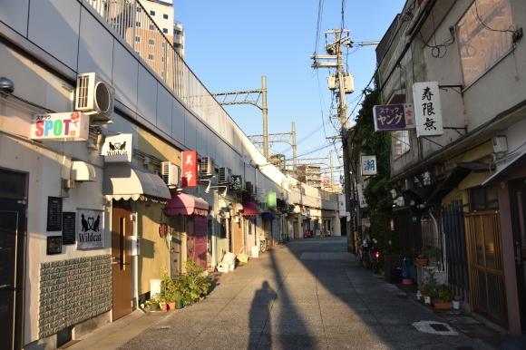 姫路の白線と花街_f0347663_16432490.jpg
