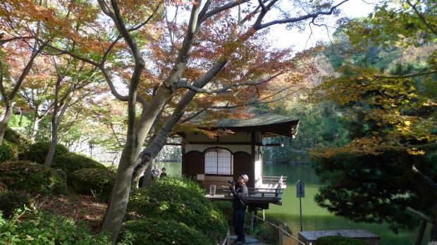 和歌山城#3、紅葉渓庭園_d0193569_08013013.jpg