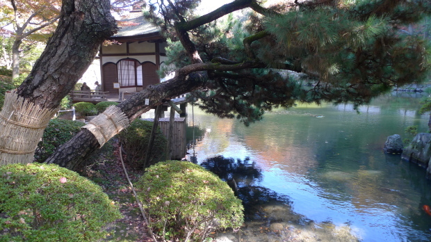 和歌山城#3、紅葉渓庭園_d0193569_08024065.jpg