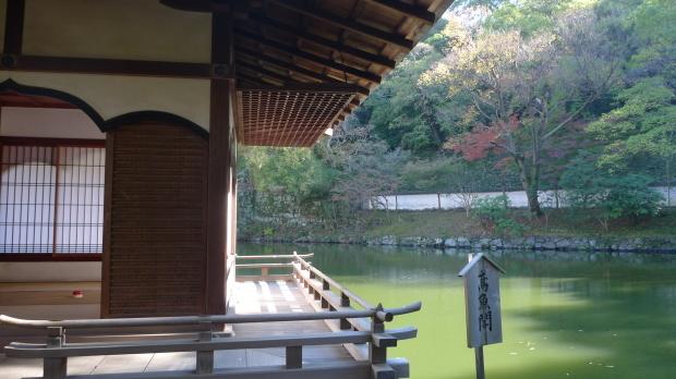 和歌山城#3、紅葉渓庭園_d0193569_08052539.jpg