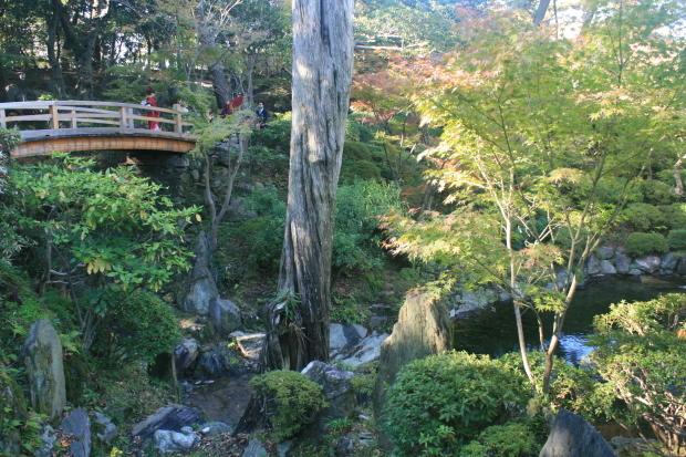 和歌山城#3、紅葉渓庭園_d0193569_08262312.jpg