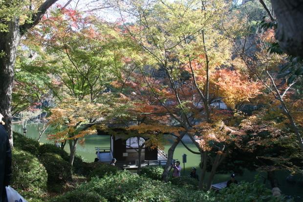 和歌山城#3、紅葉渓庭園_d0193569_08383116.jpg