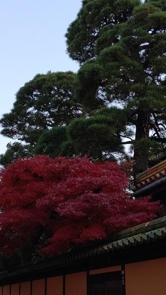 倉敷にて_a0242884_23350563.jpg