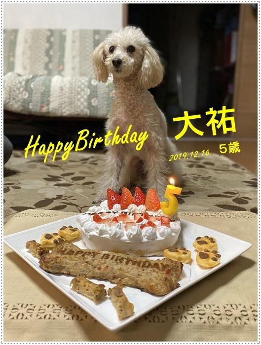 12月16日、今日は大の5歳の誕生日です、改めて、おめでとう~大!!_b0175688_19024497.jpg