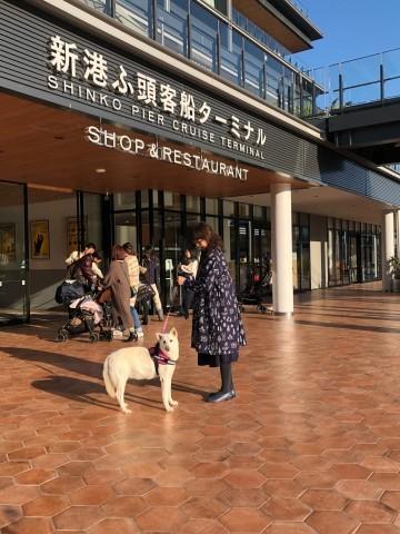 2019.12.16 クリスマスには横浜へ_f0130593_12375791.jpeg