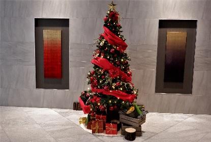 山の中のクリスマス_e0077899_10585594.jpg