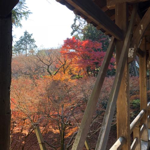 京都へ_b0302616_18133726.jpg