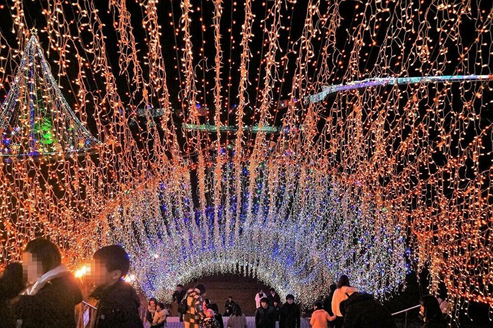 ■【2019宮ヶ瀬光のメルヘン】大自然丸ごと堪能出来ます♪_b0033423_19274049.jpg