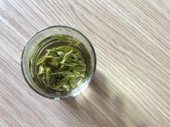 中国国際茶文化研究会認定中国茶指導老師試験_a0169924_20155530.jpeg