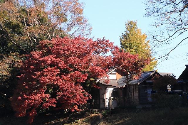 伊勢神宮内宮参詣(その1)(撮影:12月1日)_e0321325_19503671.jpg