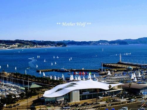 第26回マザーウルフ遠足 江ノ島レポート_e0191026_11570526.jpg