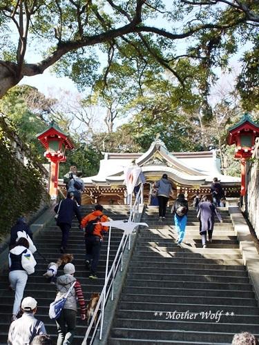 第26回マザーウルフ遠足 江ノ島レポート_e0191026_16115830.jpg
