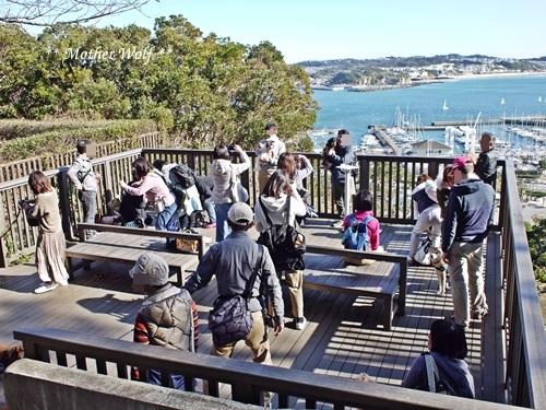 第26回マザーウルフ遠足 江ノ島レポート_e0191026_17001355.jpg