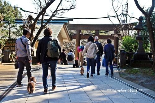 第26回マザーウルフ遠足 江ノ島レポート_e0191026_17202347.jpg