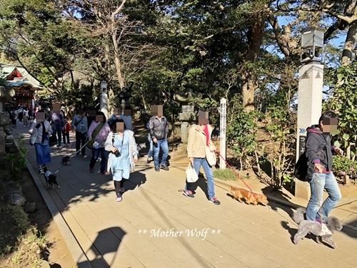 第26回マザーウルフ遠足 江ノ島レポート_e0191026_17244970.jpg