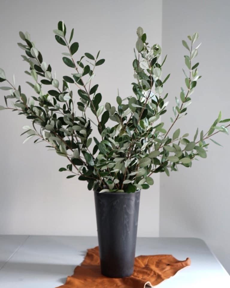 スキマの花屋(スキマスイッチ様)×ハラジュク201cafe様_c0337233_19495924.jpg