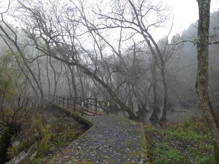 霧の万木堰_a0123836_16585715.jpg