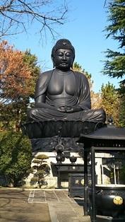 東京大仏・赤塚植物園そしてひびき庵でお蕎麦_b0080342_21060463.jpg