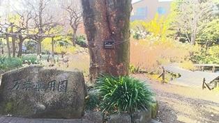 東京大仏・赤塚植物園そしてひびき庵でお蕎麦_b0080342_21094261.jpg