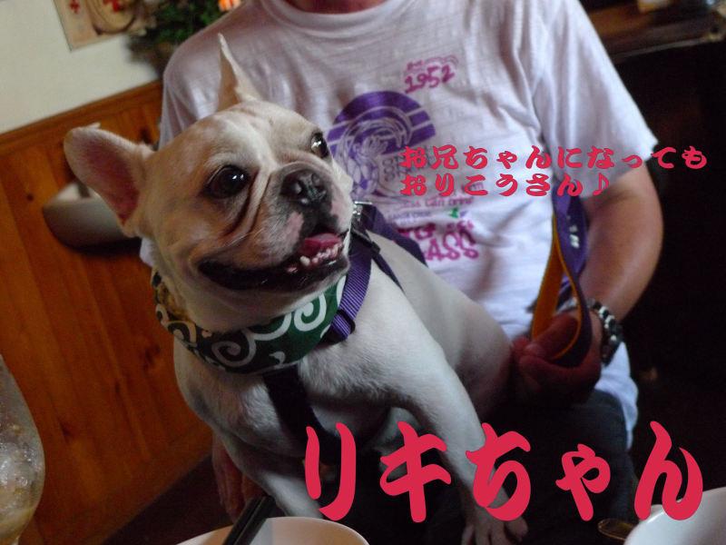 ありがとう、リキちゃん_b0307951_23115504.jpg