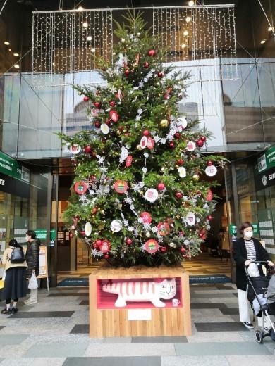 #クリスマスツリー の下に #猫 ?! #銀座_a0004752_08404463.jpg