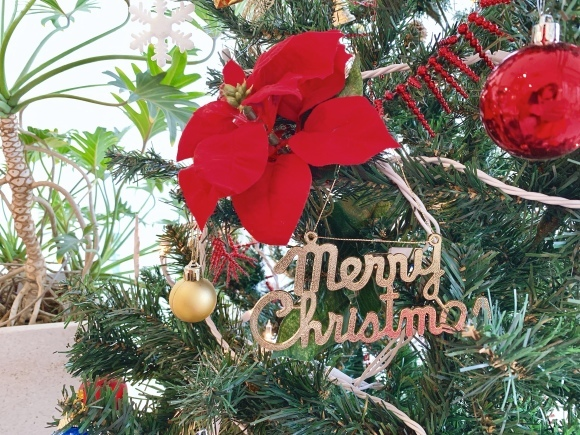 クリスマスの飾りつけをしました_a0211066_10351298.jpg
