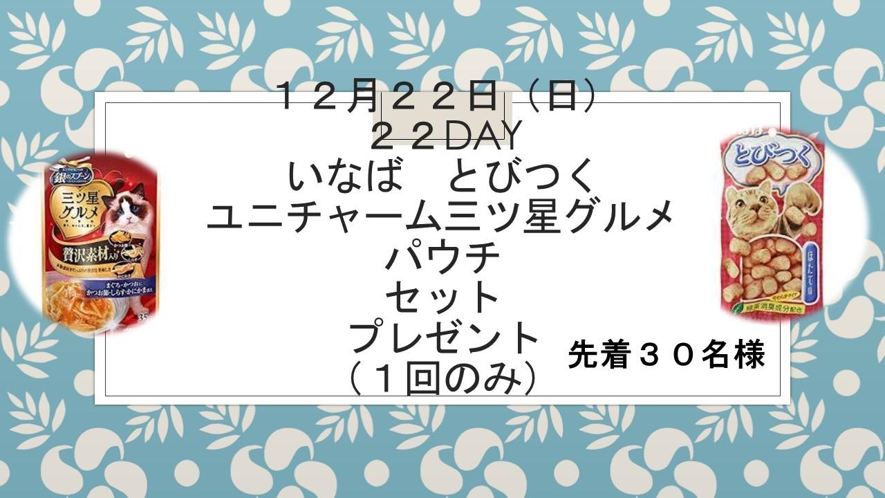 191217 22DAYイベント告知_e0181866_17111699.jpg