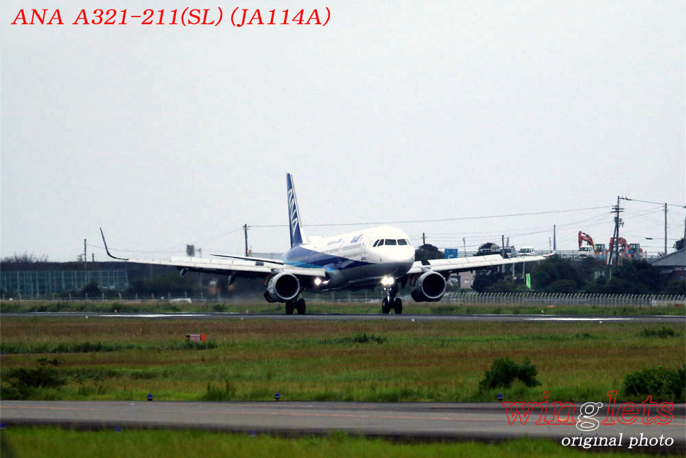 '19年 高知空港レポート ・・・ ANA/JA114A_f0352866_21164394.jpg