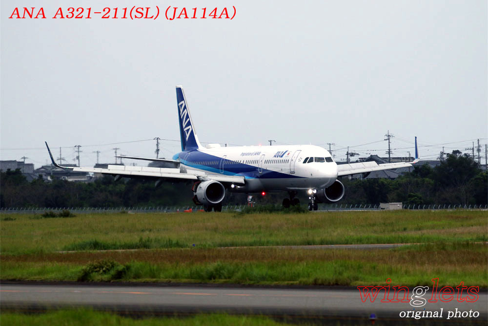'19年 高知空港レポート ・・・ ANA/JA114A_f0352866_21165881.jpg