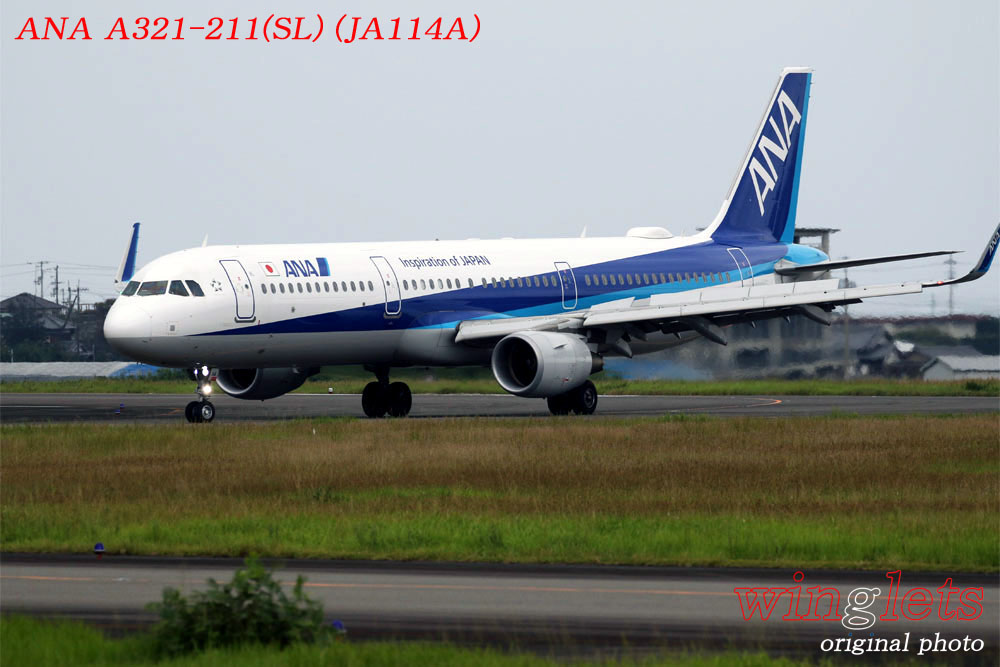 '19年 高知空港レポート ・・・ ANA/JA114A_f0352866_21175452.jpg