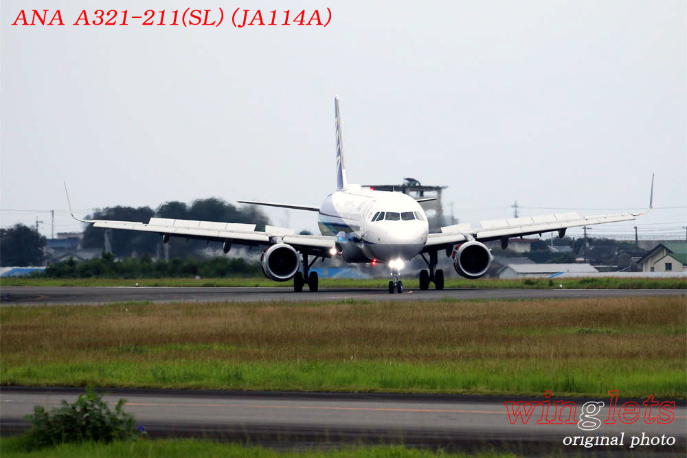 '19年 高知空港レポート ・・・ ANA/JA114A_f0352866_2117985.jpg