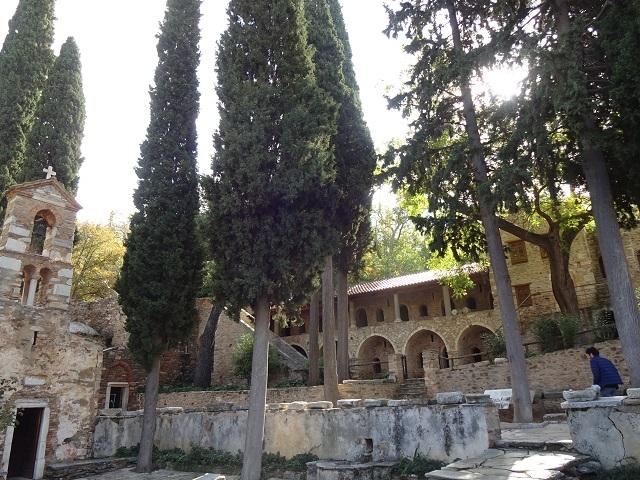 廃墟のハンサム猫_a0123372_21200987.jpg