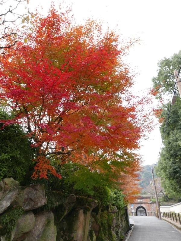 冬の京都_c0366777_23161872.jpeg