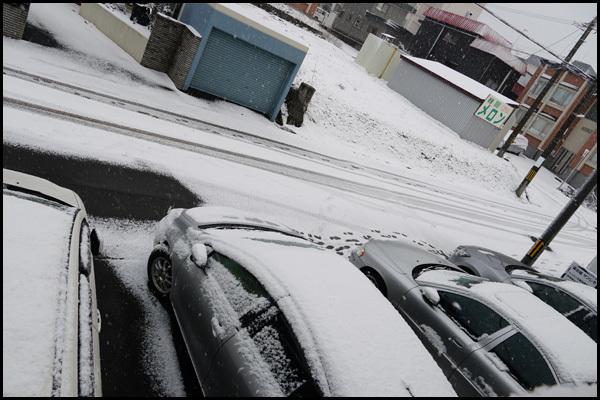 雪が降ったぁ~_b0019313_17175588.jpg