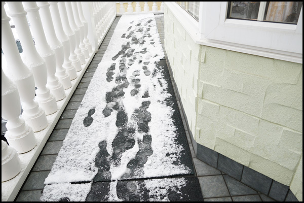 雪が降ったぁ~_b0019313_17180535.jpg