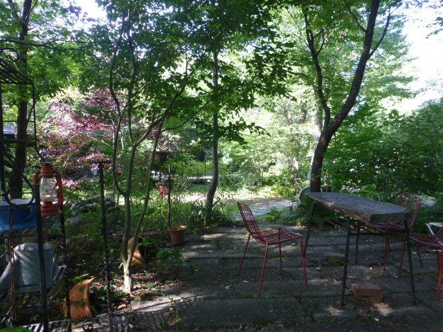 Deco Botanical_e0237625_16331318.jpg