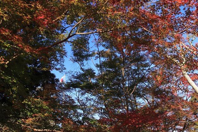 伊勢神宮内宮参詣(その2)(撮影:12月1日)_e0321325_13391883.jpg