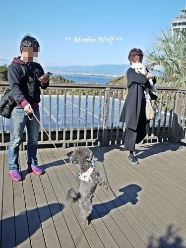 第26回マザーウルフ遠足 江ノ島レポート_e0191026_11203554.jpg