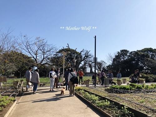 第26回マザーウルフ遠足 江ノ島レポート_e0191026_12411953.jpg