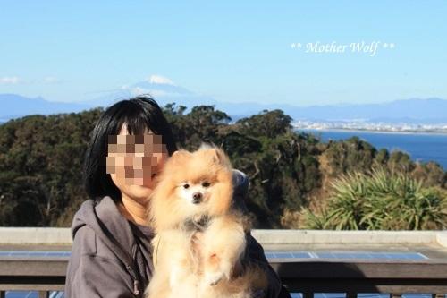 第26回マザーウルフ遠足 江ノ島レポート_e0191026_13134967.jpg