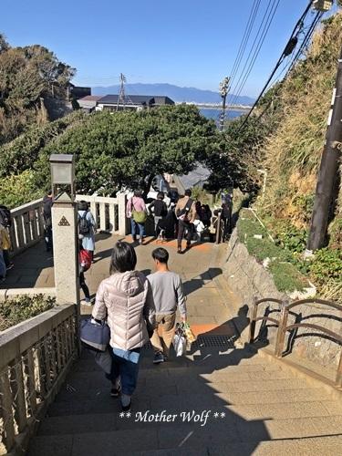 第26回マザーウルフ遠足 江ノ島レポート_e0191026_13360793.jpg