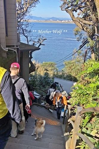 第26回マザーウルフ遠足 江ノ島レポート_e0191026_15113557.jpg