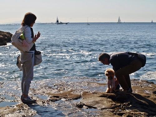 第26回マザーウルフ遠足 江ノ島レポート_e0191026_15300100.jpg