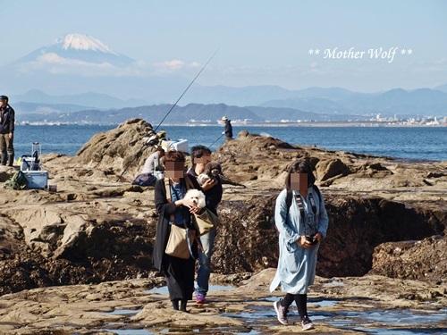 第26回マザーウルフ遠足 江ノ島レポート_e0191026_16213056.jpg