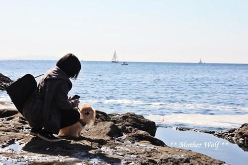 第26回マザーウルフ遠足 江ノ島レポート_e0191026_16303825.jpg
