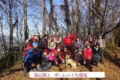 深山~鷹討山_e0265627_11510077.jpg