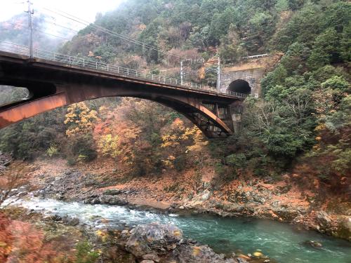 嵐山トロッコ列車_e0292546_03363468.jpg