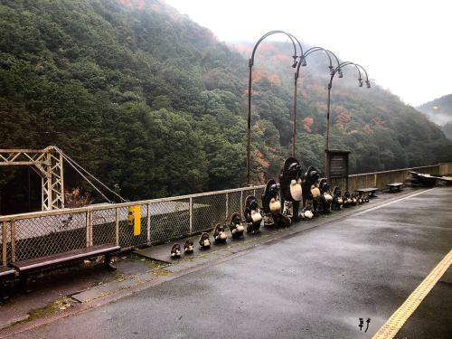 嵐山トロッコ列車_e0292546_03370416.jpg