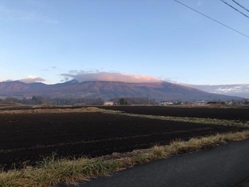 今朝の浅間山。頂上付近は雲かかり、雪が降った模様。地上は暖かい朝です。12月とは思えないくらい暖かい。雪が降らないと雪が恋しくなります。_d0186154_10472006.jpg