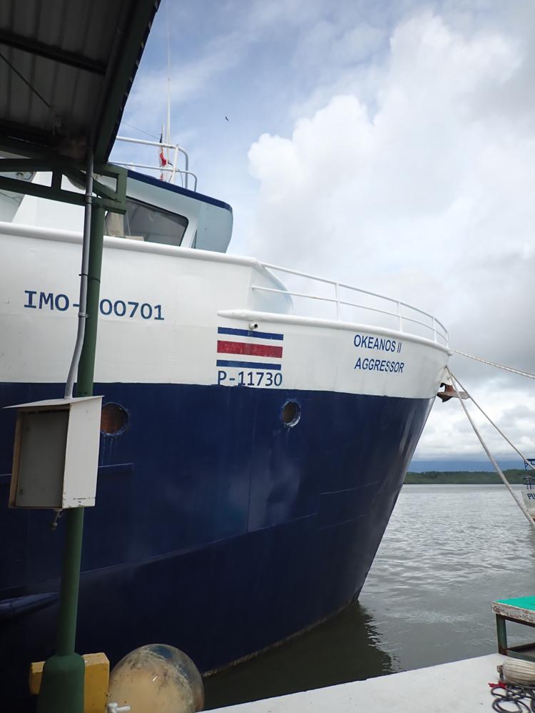 コスタリカのココ島に行ってきました~!2019        COCO IS./COSTA RICA_e0184067_17250981.jpg